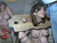 Young Slut With Well-matured Tits Seems To Be Locked In The Pillory