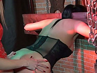 Hot Brunette Must Have Done Something Bad To Be Locked In The Pillory